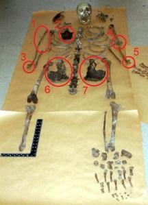 Fairford skeleton 2