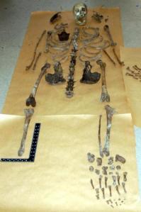 Fairford skeleton