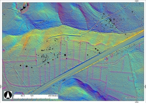 LiDAR scan of Bratley Inclosure by the A31, showing the archaeology. Imahe: New Forest National Park Authority.