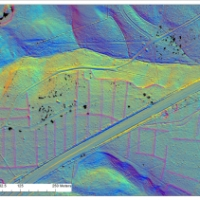 LiDAR and landscape archaeology in the New Forest