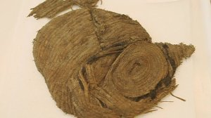 The basket removed from the burial, which contained the beads, wooden earrings and flint flake. Image: BBC