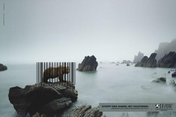 stop-wildlife-trade-PSA-01
